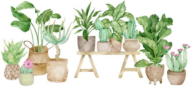Ilustração em aquarela de decoração para casa com vasos de plantas
