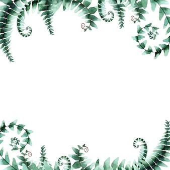 Ilustração em aquarela de folhas de samambaia, isolado no branco