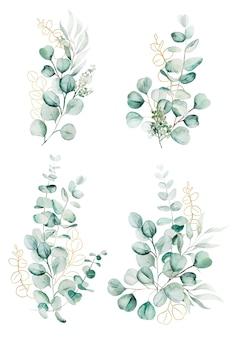 Ilustração em aquarela de ramos e folhas de eucalipto isolada