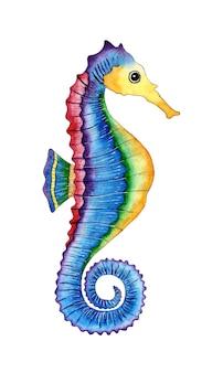Ilustração em aquarela de um cavalo-marinho arco-íris peixe raia-mar moradores do oceano isolados no branco