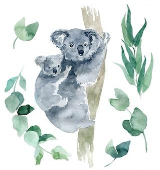 Ilustração em aquarela de um coala com galhos de eucalipto. o símbolo da austrália é um coala fofo com um filhote atrás das costas. desenho de coala desenhados à mão.