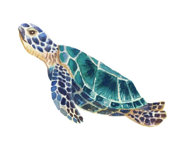 Ilustração em aquarela pintada à mão de uma tartaruga marinha azul nadando graciosamente