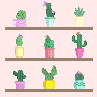 Ilustração em vetor de uma coleção de cactos em vasos de flores nas prateleiras