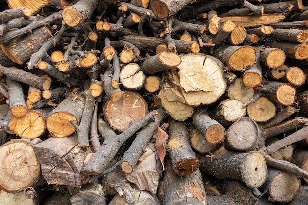 Imagem aproximada de toras de árvores secas lindamente organizadas em uma pilha, preparadas para uso posterior