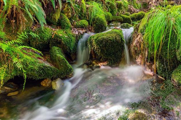 Imagem borrada de close-up de uma cachoeira de um pequeno rio, longa exposição, bela paisagem natural, plano de fundo