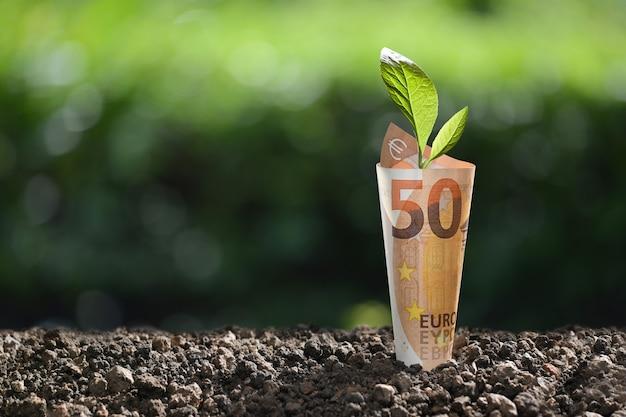 Imagem da nota de dinheiro do euro com planta que cresce em cima para negócios, economia, crescimento, conceito econômico