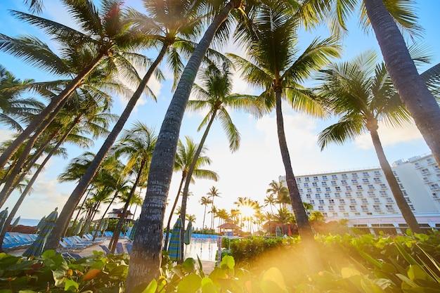 Imagem da paisagem nos trópicos de palmeiras ao lado do resort