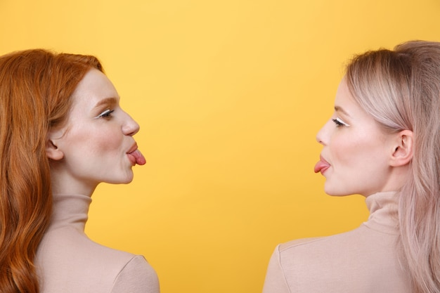 Imagem da vista lateral de amigos engraçados de duas senhoras