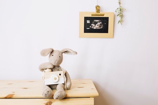 Imagem de brinquedo de peluche e sonograma