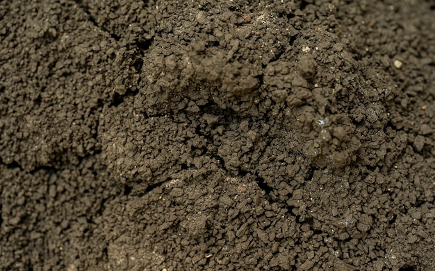 Imagem de chão rachado para segundo plano. plano de fundo de terra e terra seca com fissuras, macro fotografia de detalhe de fissuras na terra formadas pelo sol secando a terra, sem água.