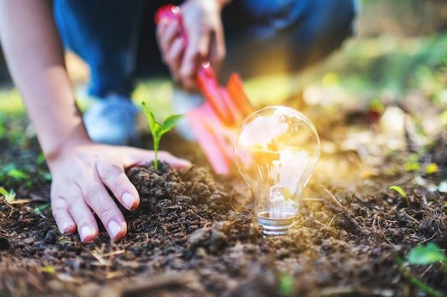 Imagem de close de uma mulher usando uma pá para plantar uma pequena árvore com uma lâmpada brilhando no chão