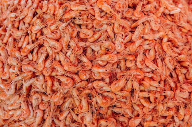 Imagem de close-up de uma pilha de pequenos camarões frescos