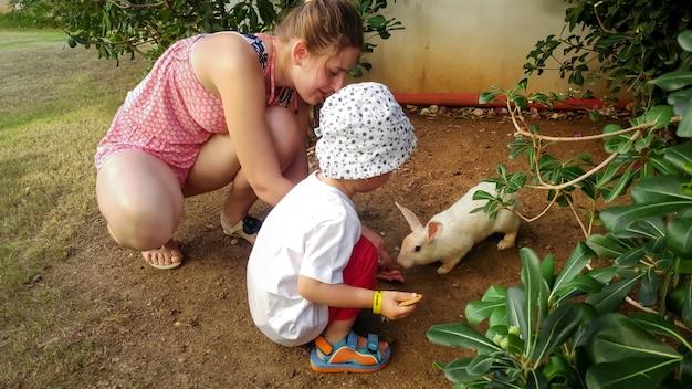 Imagem de família feliz com um filho alimentando uma lebre branca na fazenda