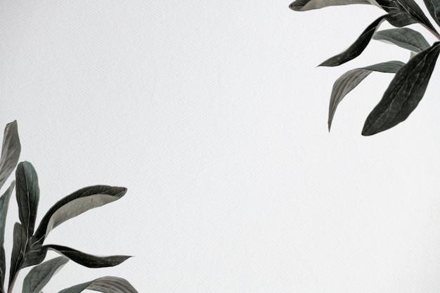 Imagem de fundo da natureza com folhas verdes