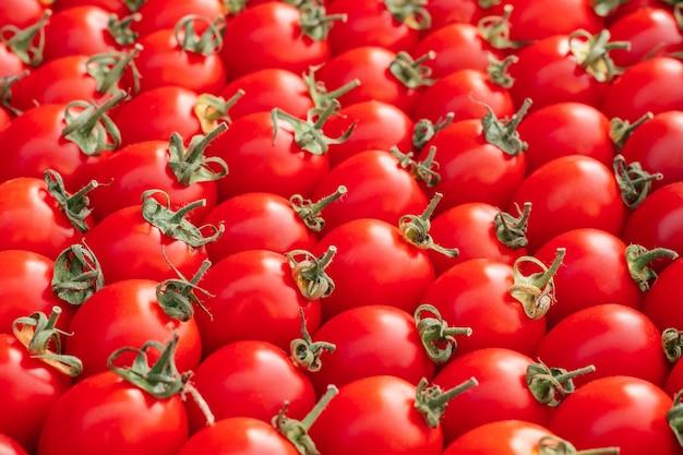 Imagem de fundo de fileiras de tomates-cereja vermelhos maduros. vista do topo. postura plana, copie o espaço