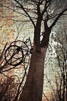 Imagem de grande árvore com armadilha de gaiola suspensa com fundo de textura de ferrugem áspera