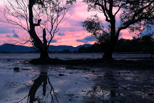 Imagem de longa exposição de cor dramática seascape de céu com reflexo no pôr do sol