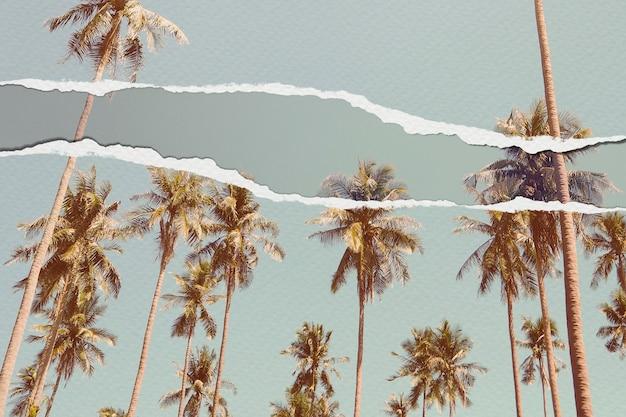 Imagem de palmeiras em papel rasgado