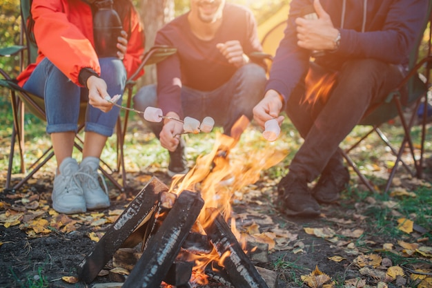Imagem de ti pessoas sentadas em cadeiras dobráveis e tendo murshmellow nos galhos. eles cozinham no fogo.