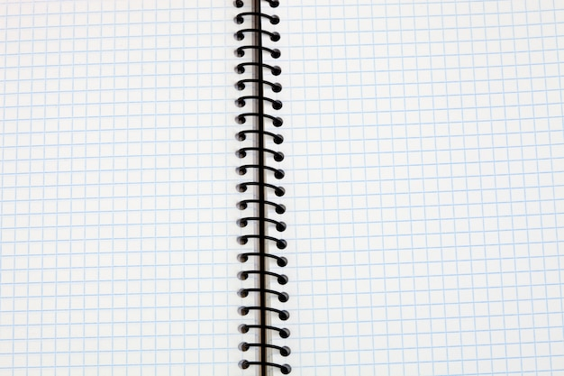 Imagem de um caderno em branco com grade de folhas