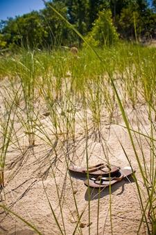 Imagem de um par de chinelos solitário deixado entre a grama da praia na areia