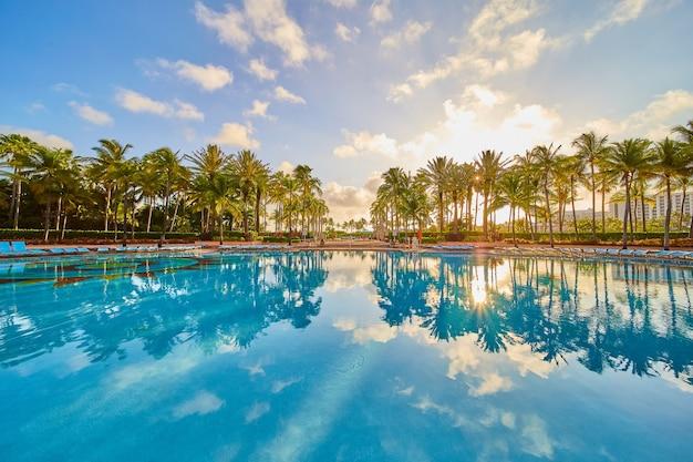 Imagem de uma grande piscina vazia nos trópicos com uma linha de palmeiras e o nascer do sol