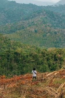 Imagem do conceito do desflorestamento que consiste em um homem irreconhecível que anda entre árvores abatidas em um silvicultura.