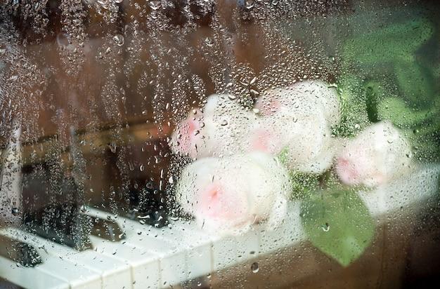 Imagem embaçada através do vidro molhado: rosas cor de rosa pálidas estão deitadas no teclado do piano.