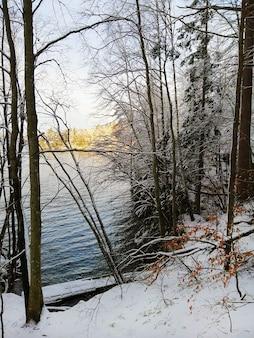 Imagem vertical de árvores cobertas de neve com um rio sob a luz do sol no fundo