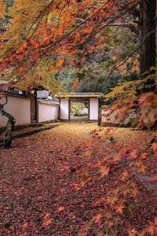 Imagem vertical de um jardim rodeado por um edifício branco coberto de folhas coloridas no outono