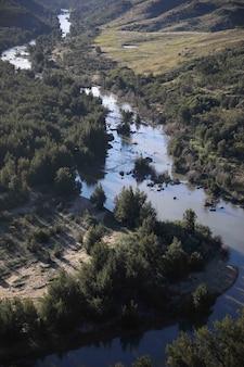 Imagem vertical de um rio de riacho cercado por vegetação