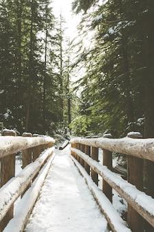 Imagem vertical de uma ponte de madeira coberta de neve, rodeada por vegetação em uma floresta