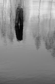 Imagem vertical em escala de cinza do reflexo de duas toras de madeira no lago