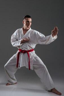 Imagens de atraente desportista na prática de quimono no karatê, isoladas sobre fundo cinza. olhando para o lado.
