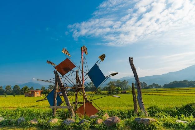 Imagens de paisagem da enfardadeira de turbina é perto dos campos de arroz.