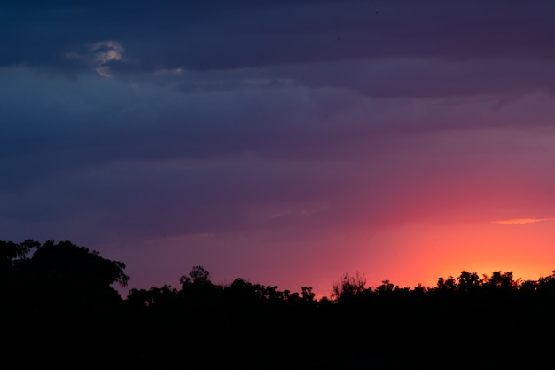 Imagens de silhueta, céu multicolorido e postes telefônicos.
