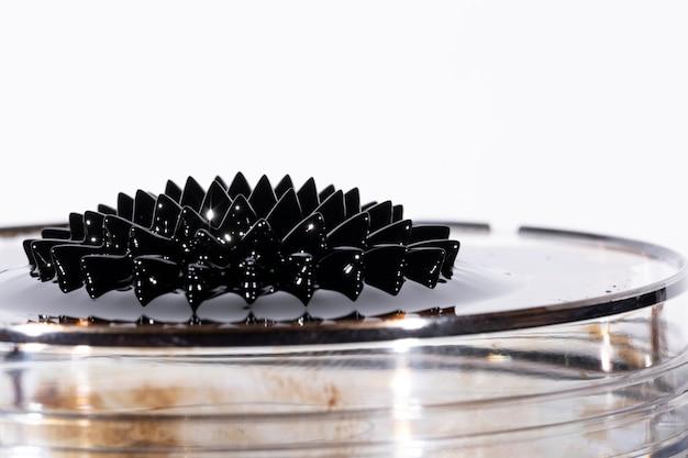 Íman de neodímio preto em um prato feito de vidro