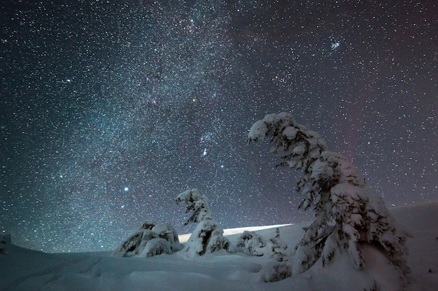 Impressionante céu estrelado de bela natureza com pinheiros nevados e belas encostas de montanhas de inverno. o conceito de natureza intocada do norte e beleza nevada