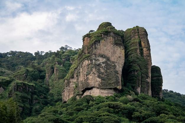 Impressionante rocha gigante, parte da floresta, vegetação ganhando terreno