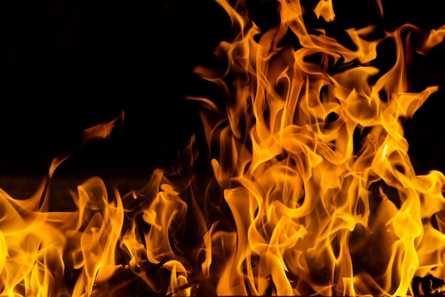 Incêndio florestal de closeup