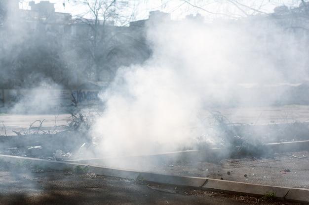 Incineração de lixo, poluição ambiental