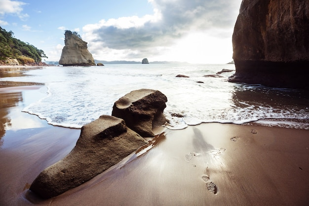 Incomum cathedral cove, coromandel peninsula, nova zelândia