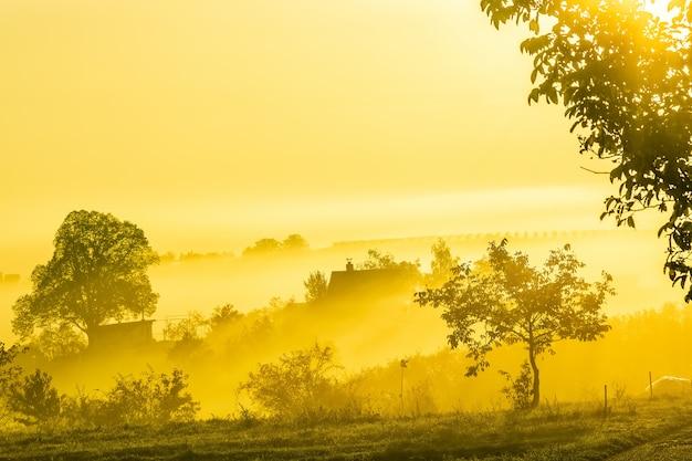 Incrível paisagem da natureza com árvores, vinhedos e casa de campo na névoa da manhã