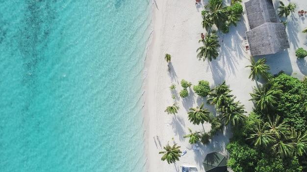 Incrível vista de olhos de pássaro nas maldivas