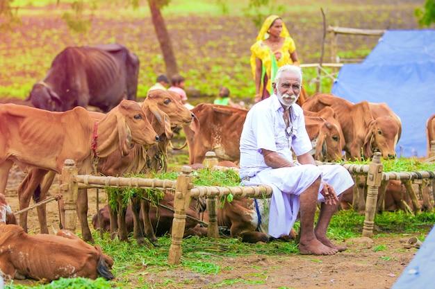 Índia rural, agricultor indiano
