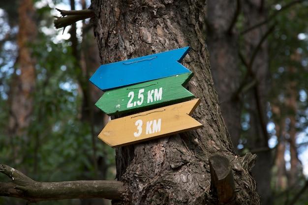 Indicadores de direção de movimento e distância na floresta.