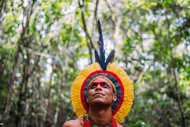 Índio da tribo pataxó, com toucado de penas. jovem índio brasileiro olhando para a esquerda
