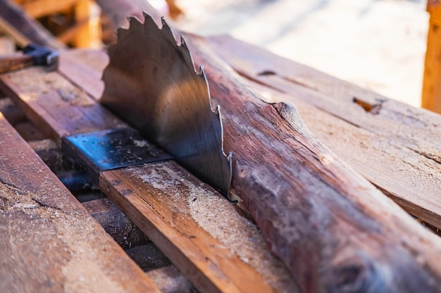 Indústria da madeira com lâmina de serra e madeira