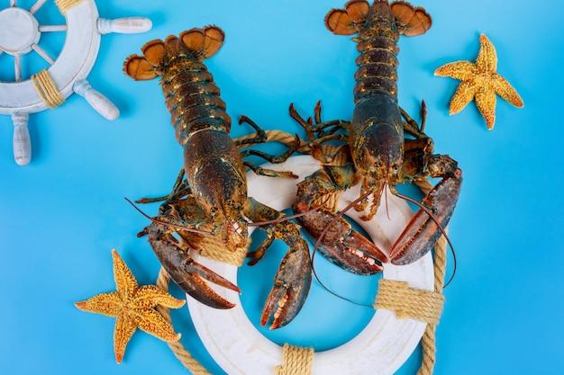 Indústria pesqueira. lagosta crua no círculo de resgate com estrela do mar