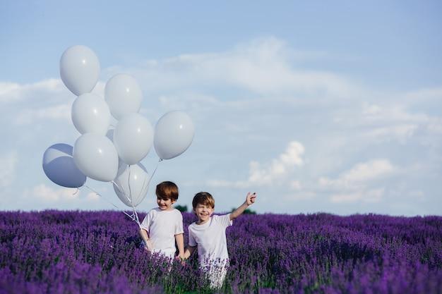 Infância feliz, dois meninos felizes de mãos dadas em um campo de lavanda